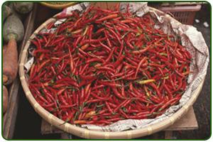 La Mexicana Spice: About us